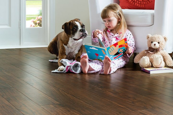 wood-flooring-for-pet-owners|wood-flooring-for-pet-wners